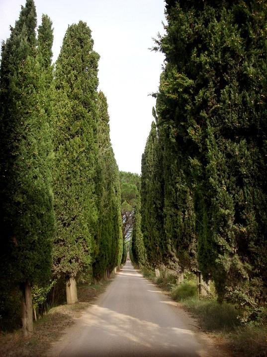 Красивые пейзажи. Тоскана. Италия. Фото