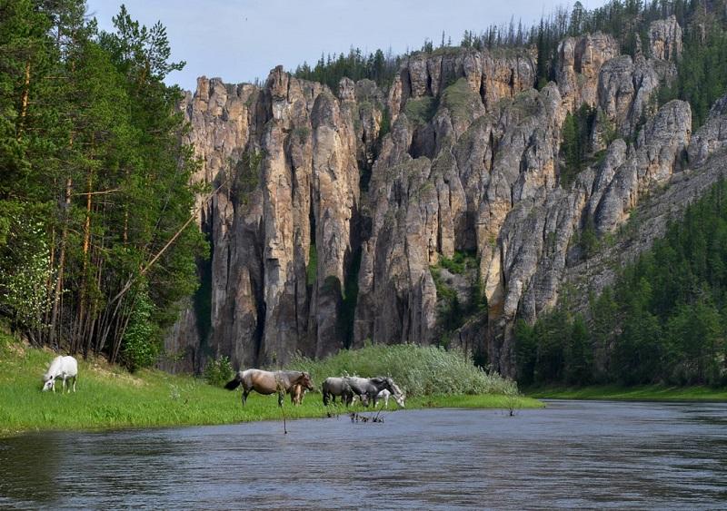 Ленские столбы. Река Синяя. Россия. Красивое фото