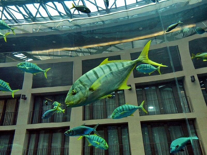 Отель Radisson Blu в Берлине. Огромный аквариум. Фото