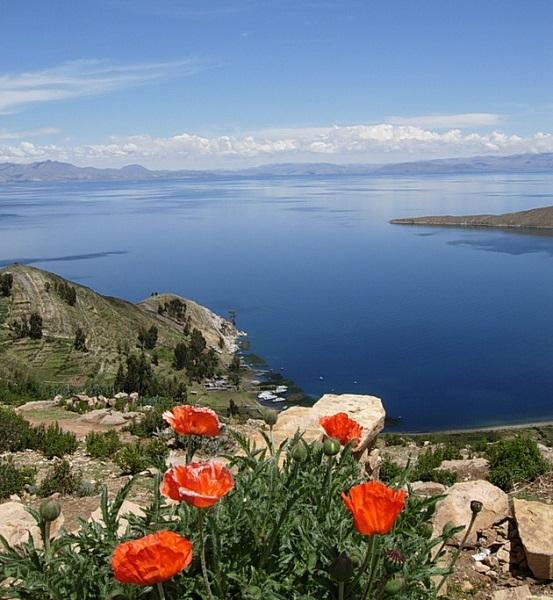 Озеро Титикака. Боливия/Перу. Фото
