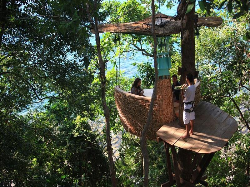 Ресторан Птичье гнездо на дереве. Курорт Сонева Кири. Фото