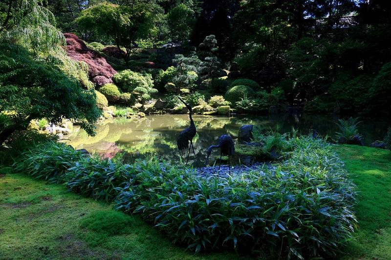 Красивые фото японского сада в Портлэнде, Орегон