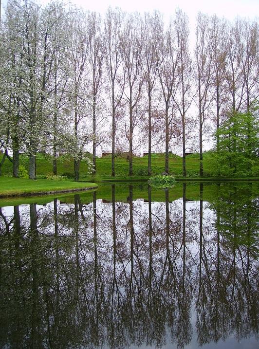 Сад-Вселенная Чарльза Дженкса в Шотландии. Фото