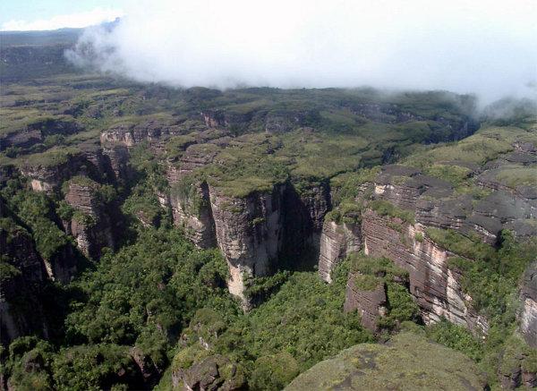 Лагуна в парке Канайма:  Национальный парк Канайма в Венесуэле. Вид сверху. Фото