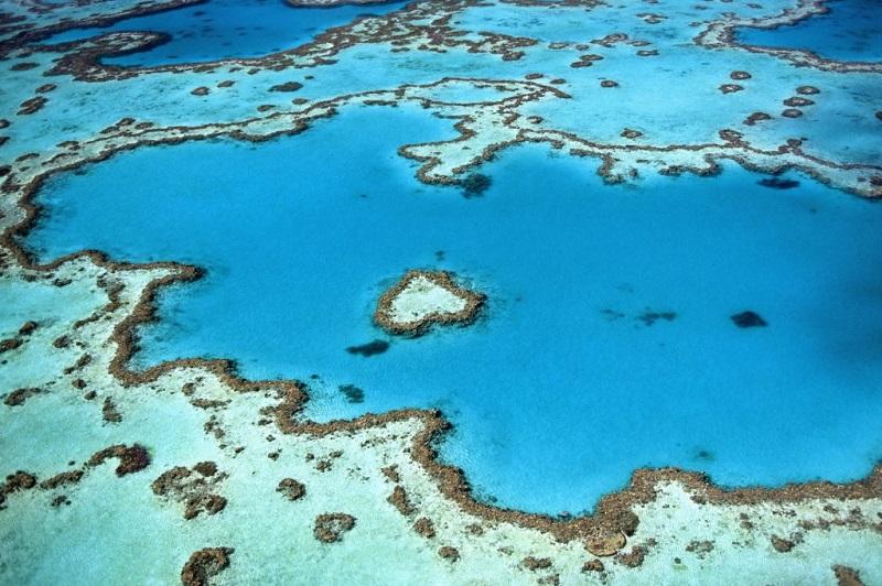 Большой Барьерный риф. Австралия. Фото сверху