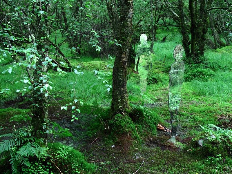 Стеклянные скульптуры в шотландском лесу. Фото