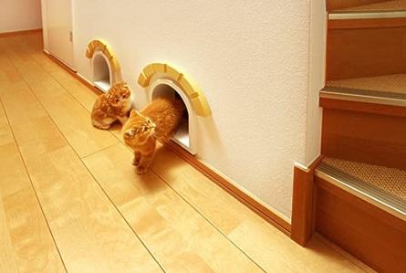 Дизайн дома для кошек от Asahi Kasei. Фото