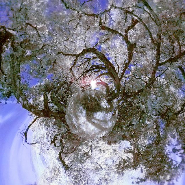 Стереографические фотографии: маленькие планеты