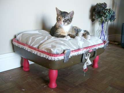 Место отдыха для кота в доме своими руками. Фото
