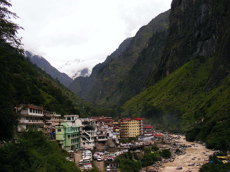 Долина Цветов в Гималаях. Говиндгхат