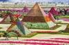 Цветочный чудо-парк в Дубае, ОАЭ (28 фото)