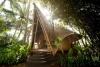 Бамбуковый эко-комплекс Green Village на острове Бали, Индонезия (30 фото)