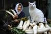 Бабушка и кот: фотоистория необыкновенной дружбы