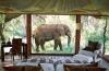 Комнаты с потрясающим видом из окна (31 фото)