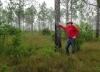 МС Дэвис – человек, который высадил 8 млн деревьев во Флориде, США (14 фото)