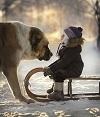 Деревенская идиллия в зимних фотографиях Елены Шумиловой (26 фото)
