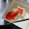 Реалистичные 3D-рисунки от Кенга Лая (30 фото)