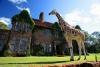 Завтрак с жирафами в необычном отеле Giraffe Manor, Кения (26 фото)