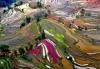 Рисовые террасы Хунхэ-Хани в Китае (26 фото)