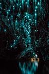 Вайтомо - пещеры светлячков в Новой Зеландии (23 фото)